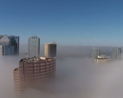 Tampa Bay in de mist